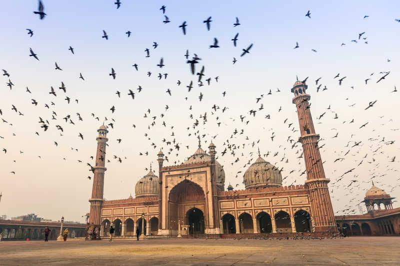 印度旧德里贾玛清真寺