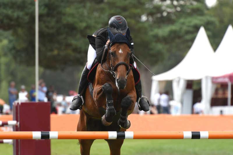 骑马|体育照片摄影图片素材_比赛马术_免费下北京颐源居高尔夫球图片