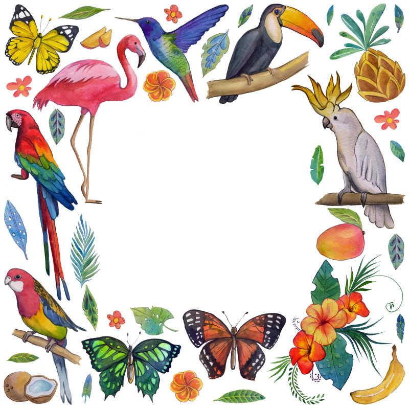 热带花园岛屿动物植物插画