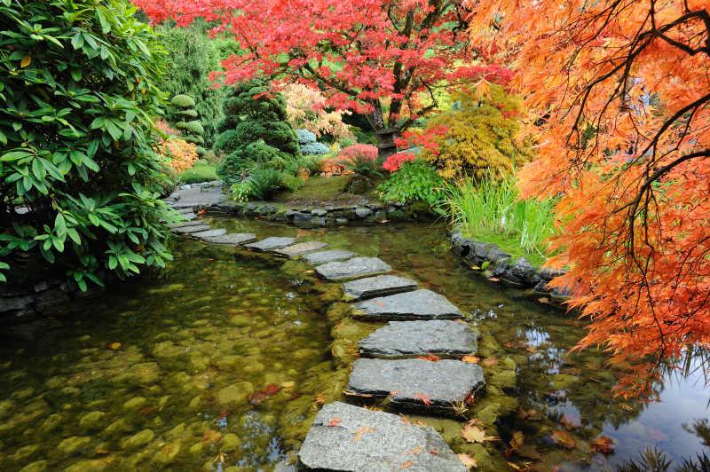 花园池塘和弯曲的岩石道路