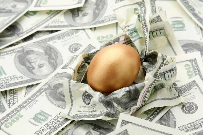 以美元纸币做巢的金蛋