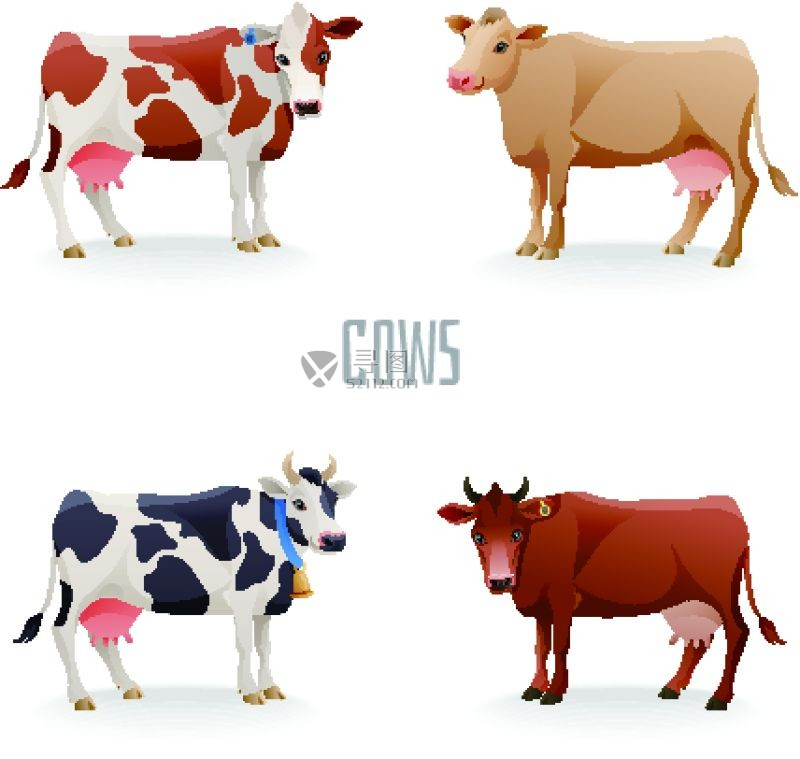 不同颜色的奶牛矢量插画图