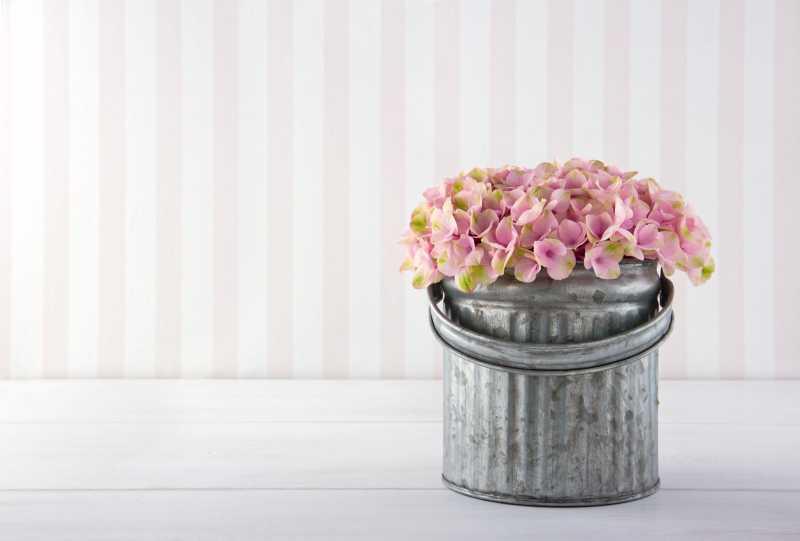 粉色绣球花束