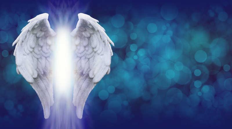 矢量的白色翅膀图片素材_洁白的翅膀矢量插图插画_eps