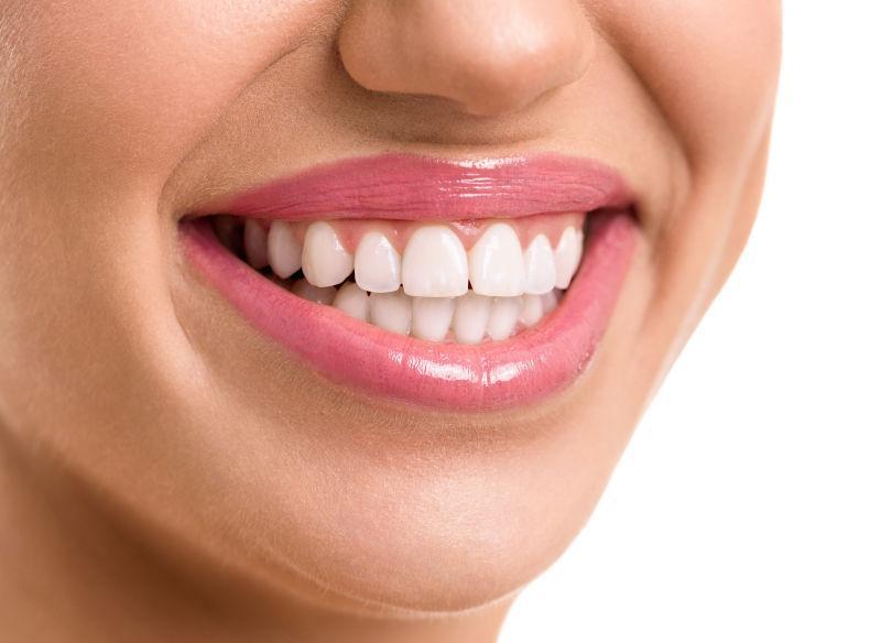 下巴牙齿结构图