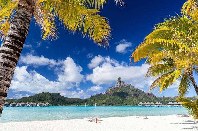 蓝天白云下的波利尼西亚岛的沙滩与棕榈树
