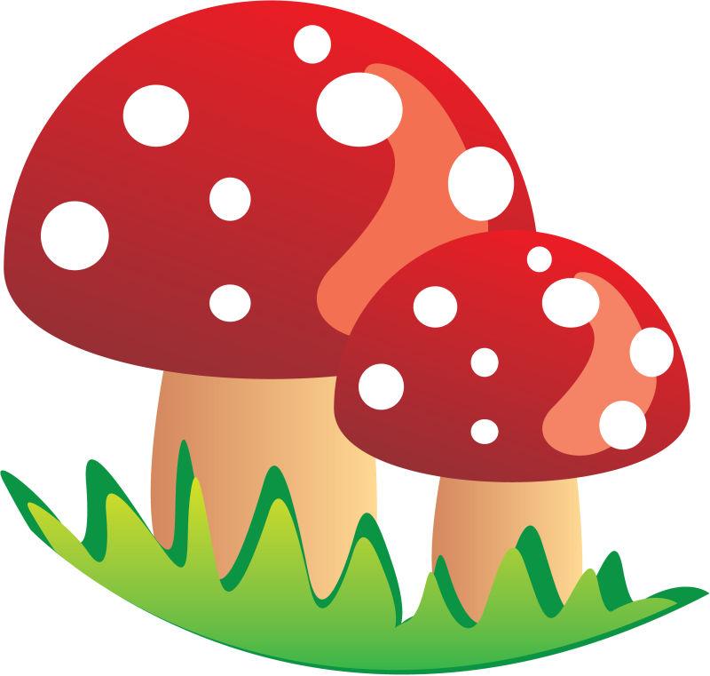 手绘风格的彩色蘑菇矢量插图