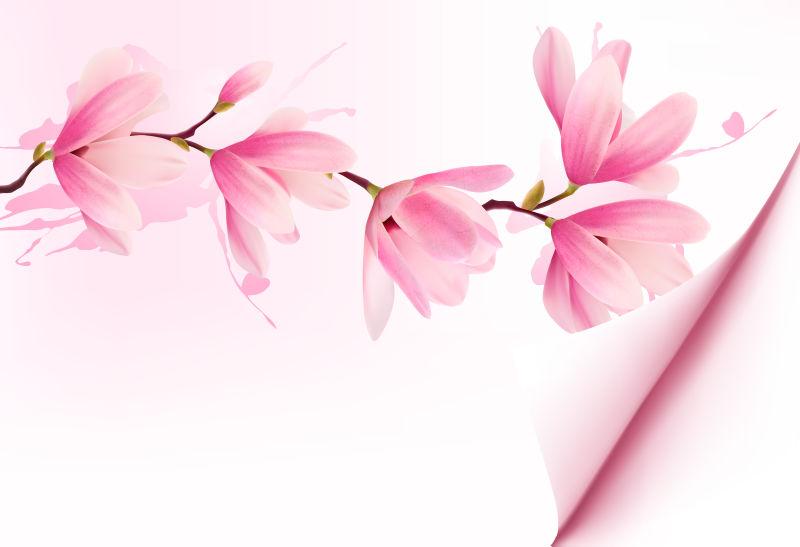 粉色的矢量花卉背景