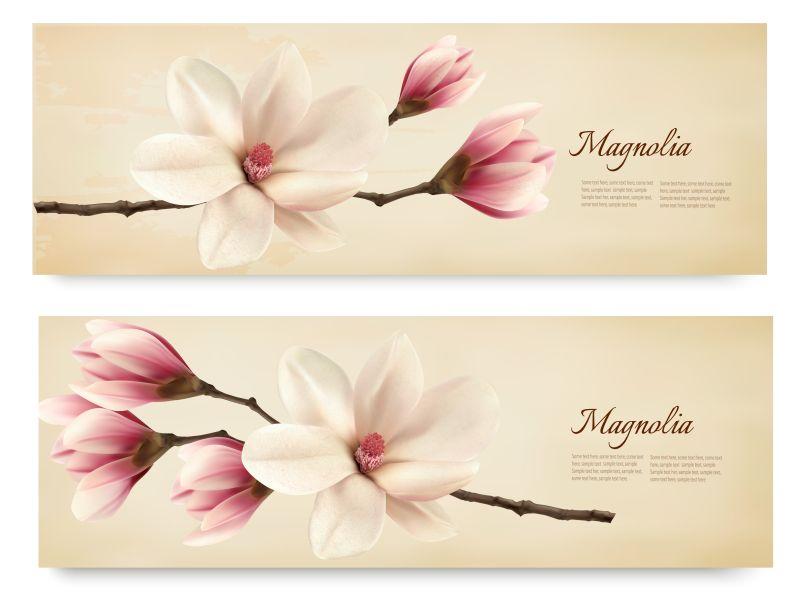 木兰花装饰的长卡片矢量设计