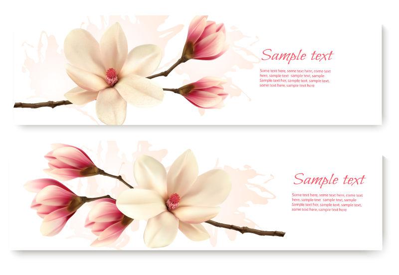 矢量的玉兰花图案卡片