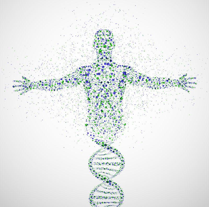 细胞平面图,显示所有细胞器_细胞结构图片-矢量人体细胞结构素材-高清图片-摄影照片-寻图 ...