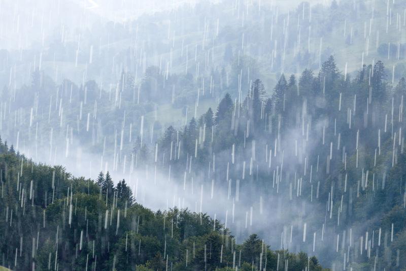 倾盆大雨中的热带雨林