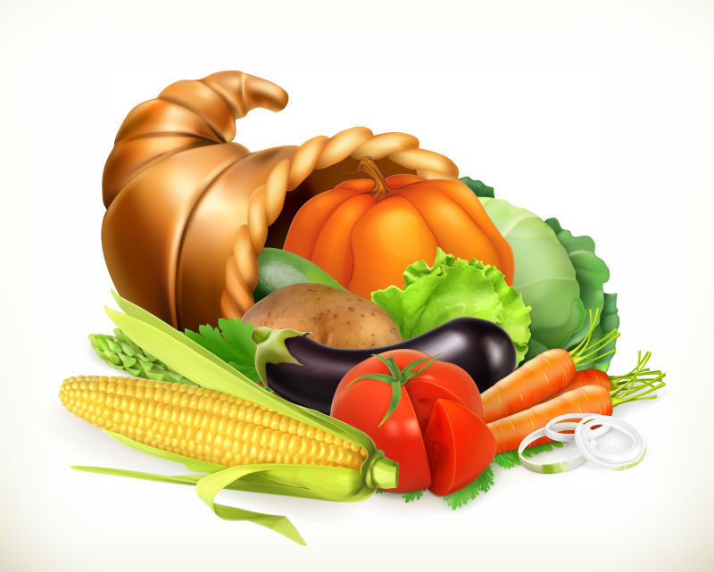 矢量的感恩节蔬菜插图