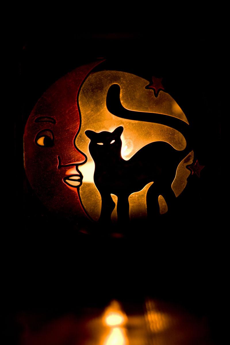发光的猫图形
