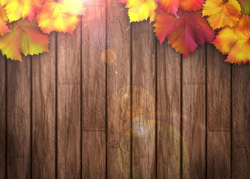 棕色木板上的红色和黄色的树叶