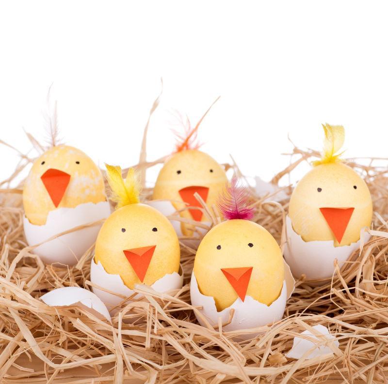 复活节彩蛋装饰雏鸡