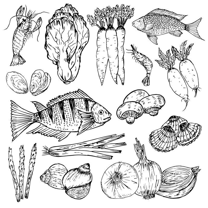 一套手工制作的有机食品有机草药香料和海鲜健康食品绘图集向量