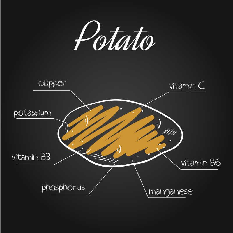 黑板上的马铃薯营养素列表矢量插画