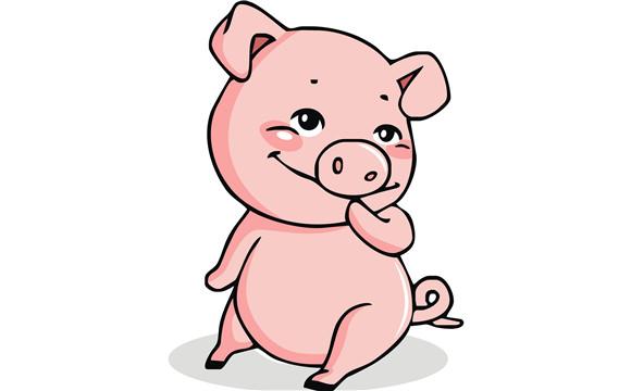 矢量猪元素