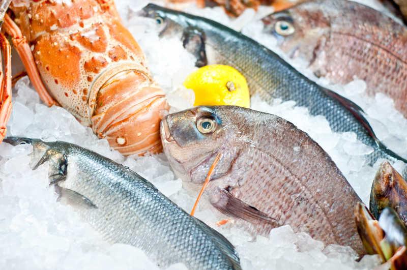 冰块上的鲷鱼和龙虾