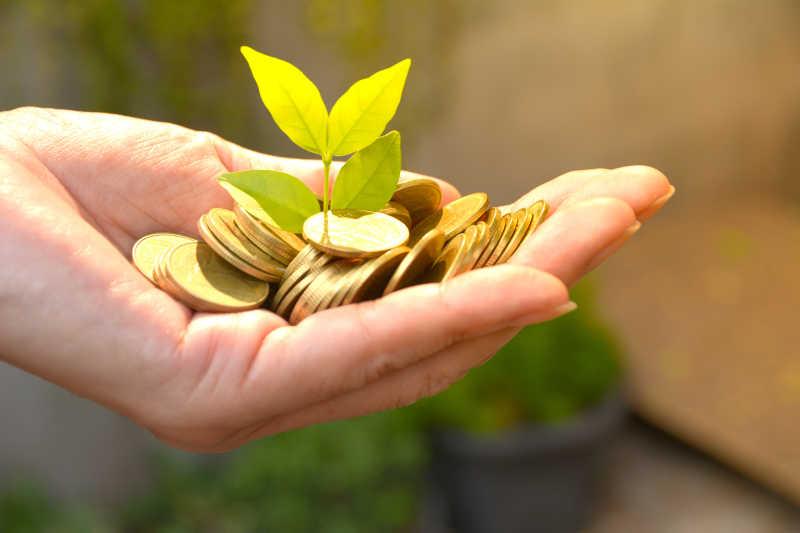 省钱概念和手持钱币