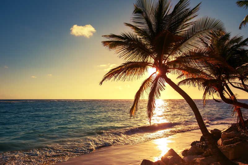 美丽的海滩日出