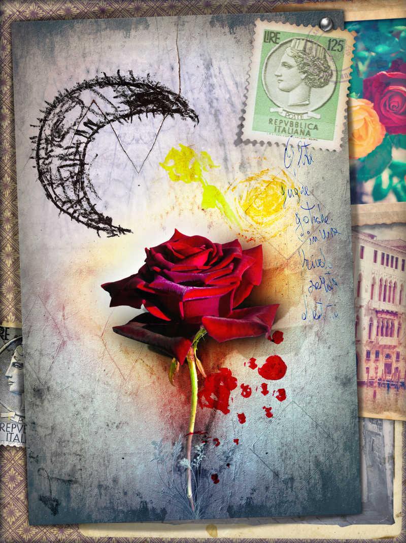 神秘的红玫瑰