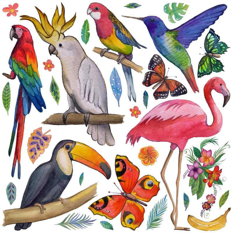 热带花园各种动物植物插画