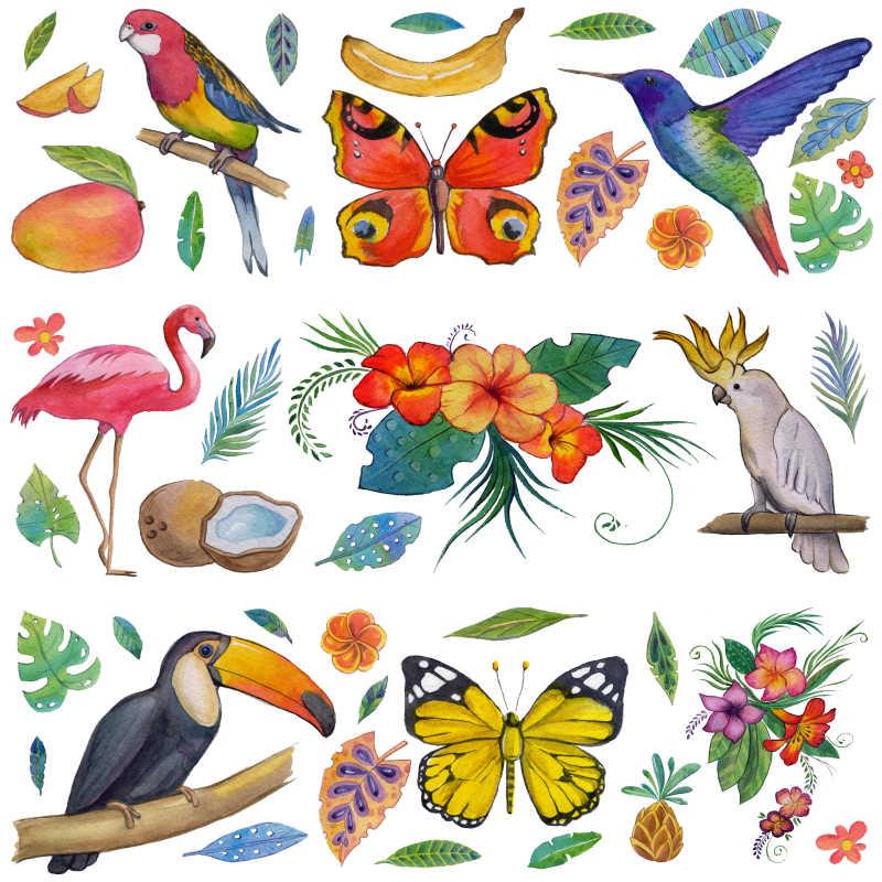 热带花园各种动物和植物的插画