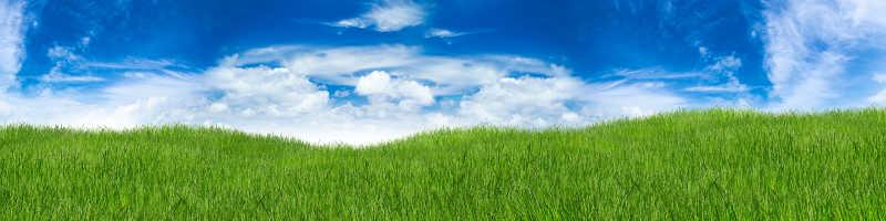 蓝色的天空和绿色的草地