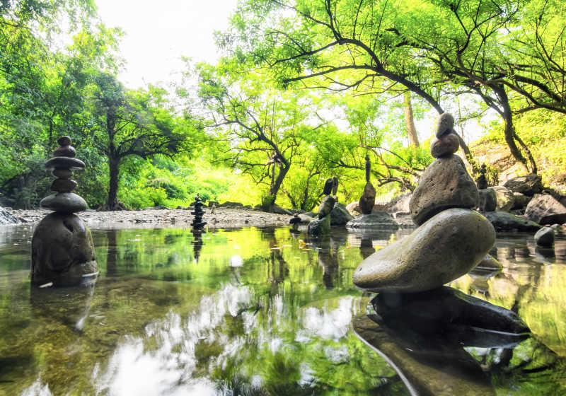 宁静的池塘自然环境