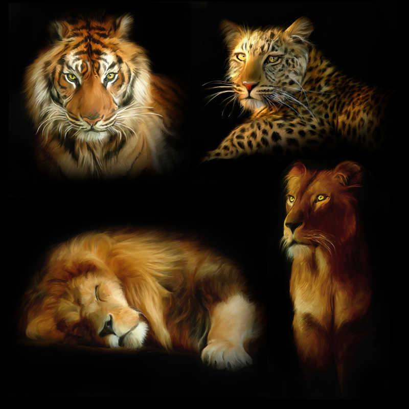 黑色背景下的老虎狮子和豹子