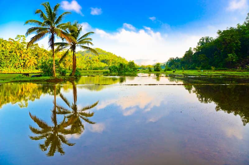 蓝天白云下的热带河流风景