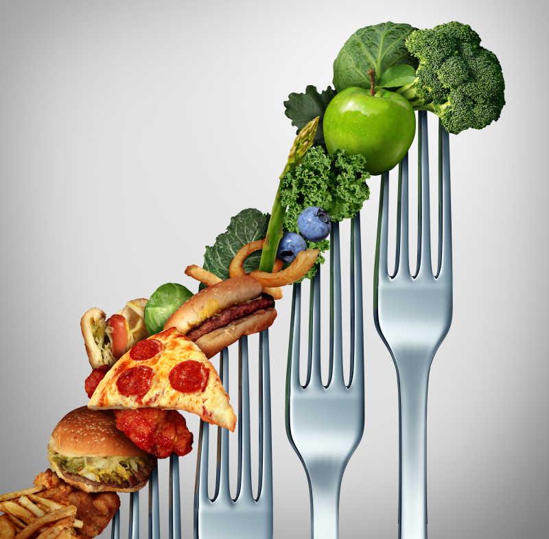 饮食进步变化阶段