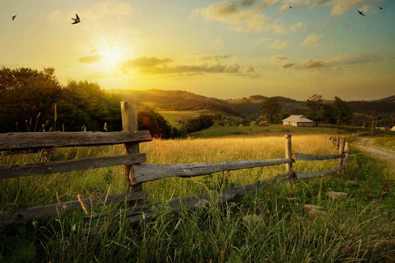 充满艺术气息的乡村日落景观