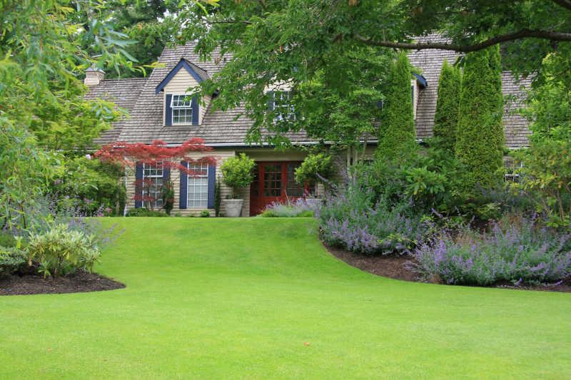 绿茵草地上的别墅
