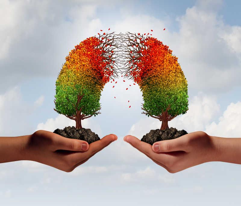 创意树木分开合作危机
