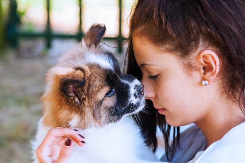 可爱的狗狗被女孩抱在怀里