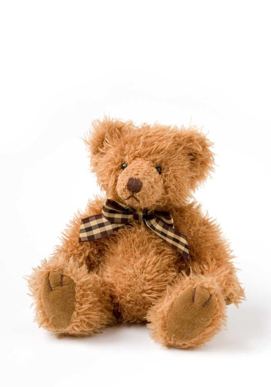 棕色的毛绒泰迪熊