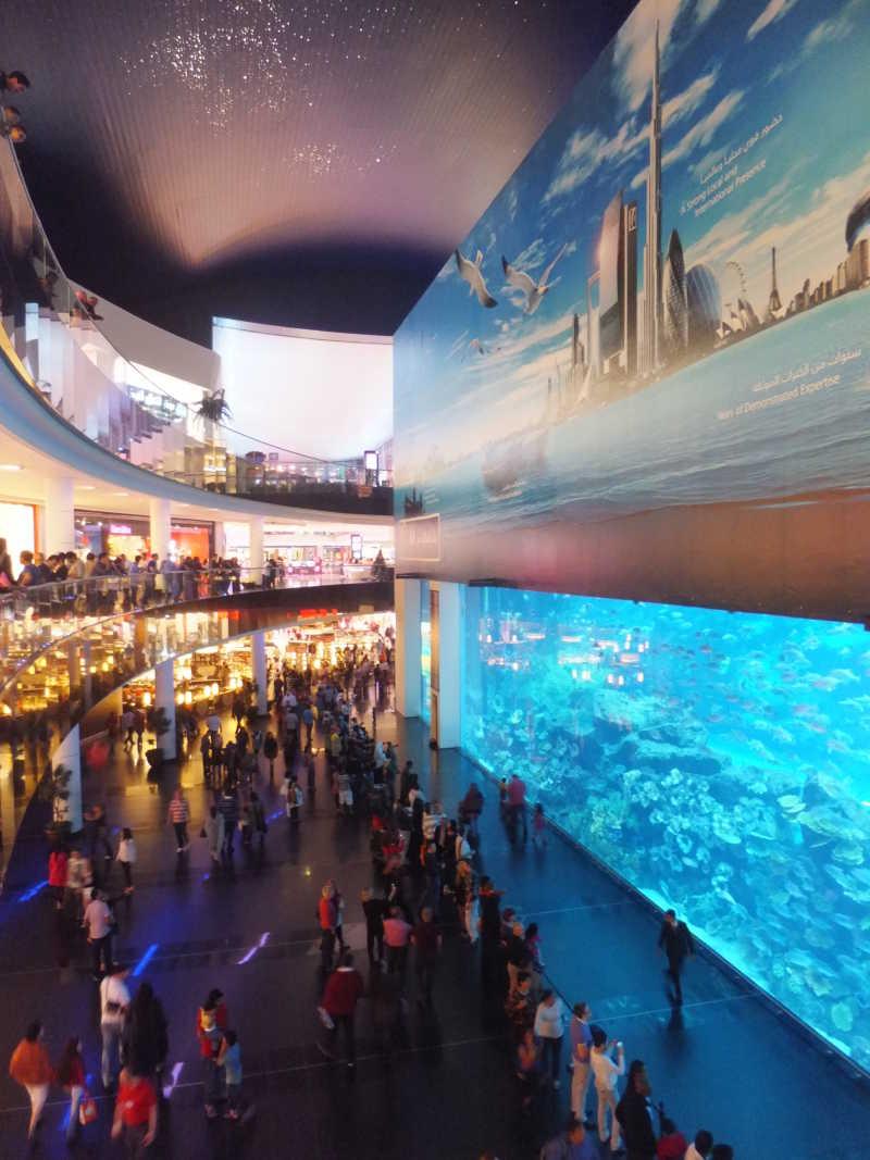 在迪拜购物中心的水族馆