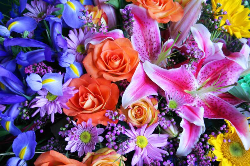 不同种类的鲜花