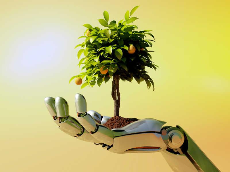 机械手臂上的树