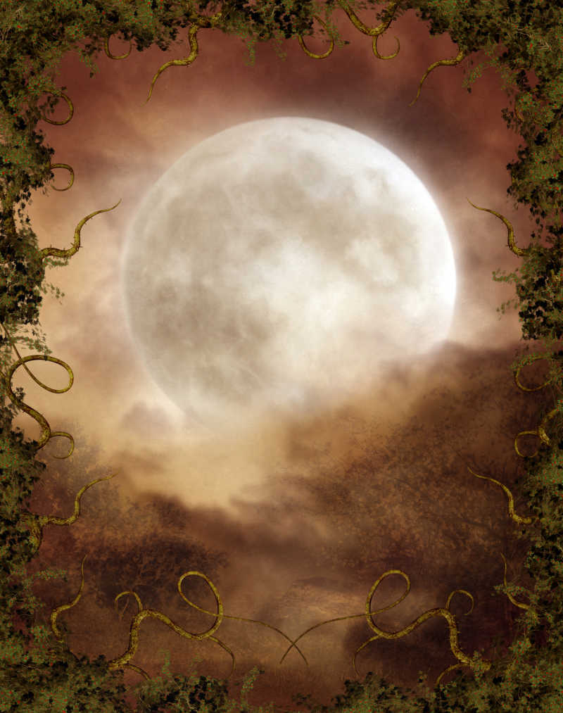 秋天的月亮特写插画