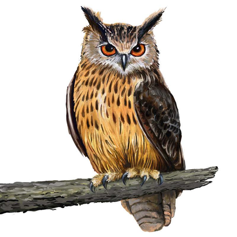 数码油画树上的猫头鹰