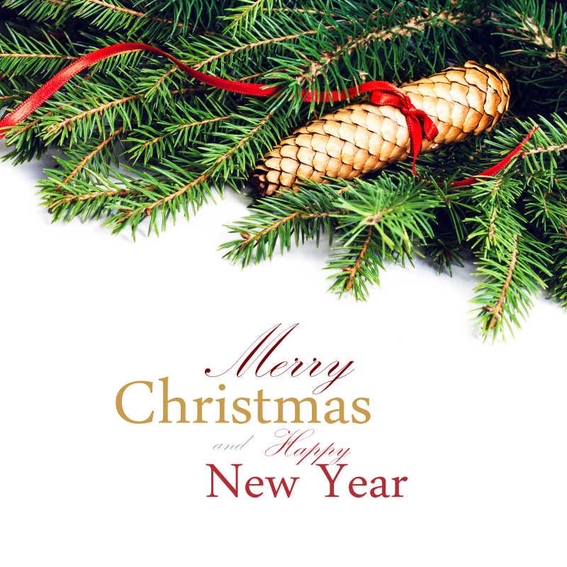 白色背景下的圣诞树枝和红色丝带绑着的装饰品