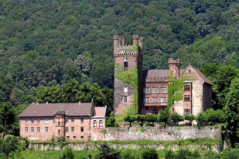 森林里的城堡建筑