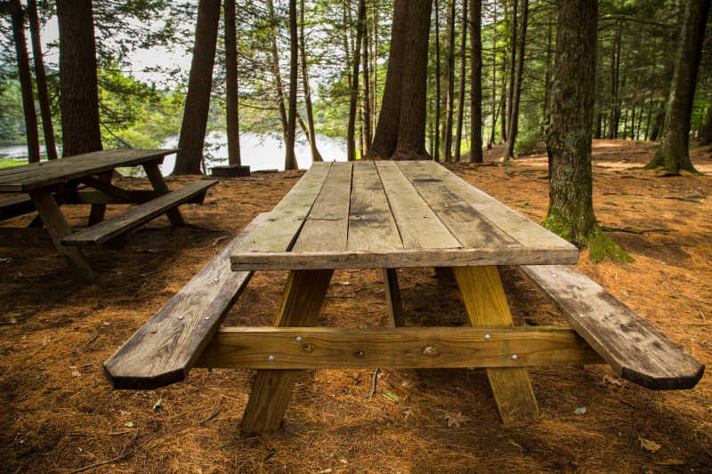 乡村公园野餐桌