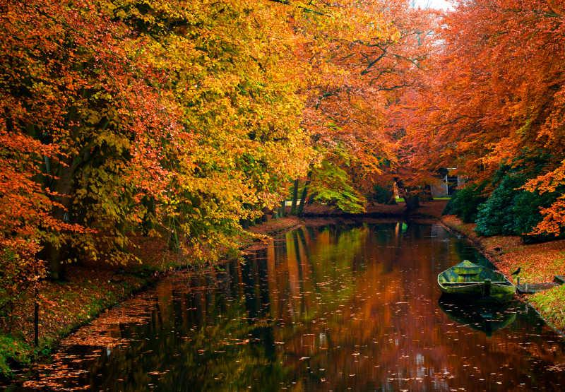 秋季森林美景