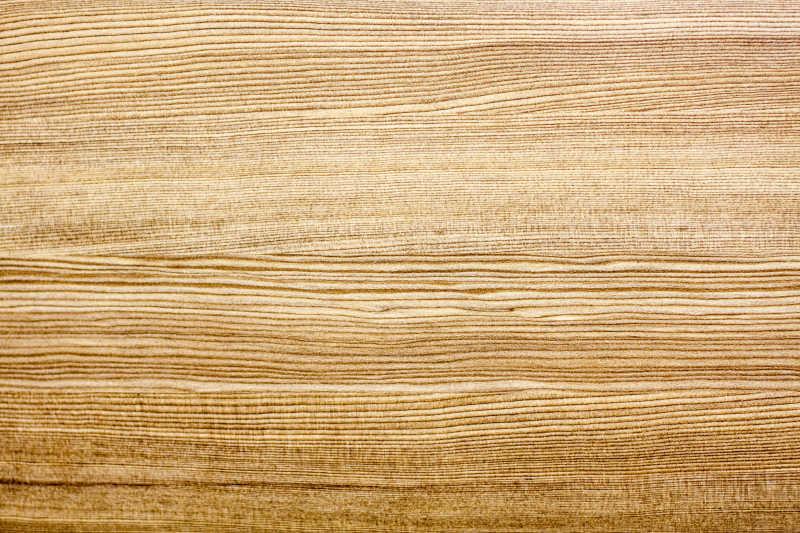 树木纹理背景