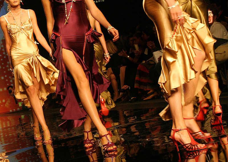 一群猫走的模特美腿